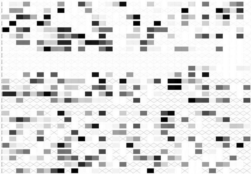 altrospazio fotografia, Autoacromia è un laboratorio e un algoritmo di visione che produce esposizioni automatiche